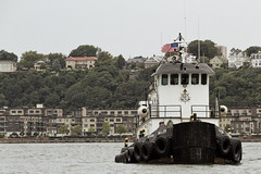 r_180909063_beat0075_a (Mitch Waxman) Tags: 2018greatnorthrivertugboatrace hudsonriver manhattan tugboat workingharborcommittee newyork