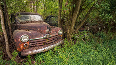 Hauntings (Wayne Stadler Photography) Tags: georgia preserved retro abandoned classic rustography automotive overgrown vehiclesrust rusty junkyard vintage oldcarcity rustographer derelict white
