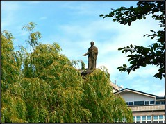 Above  the Trees View... (** Janets Photos **) Tags: uk hull citycentres monuments williamwilberforce