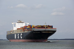 MSC FRANCESCA (angelo vlassenrood) Tags: ship vessel nederland netherlands photo shoot shot photoshot picture westerschelde boot schip canon angelo walsoorden cargo container mscfrancesca