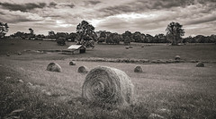 Hay in a Field_BW (Bob G. Bell) Tags: hay hayfield roundbale barn farm wv westvirginia greenville sky clouds rural bobbell