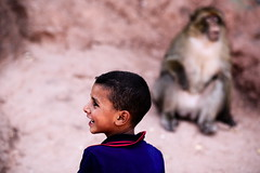 * (Gwenaël Piaser) Tags: morocco maroc 2018 ⵜⴰⴳⵍⴷⵉⵜⵏⵍⵎⵖⵔⵉⴱ المملكةالمغربية royaumedumaroc royaume ⵍⵎⵖⵔⵉⴱ المغرب almaġrib travel vacances voyages unlimitedphotos gwenaelpiaser canon eos 6d canoneos eos6d canoneos6d fullframe 24x36 reflex rawtherapee 85mm 85mmf18 canonef85mmf18usm ef85mmf18usm ef85mm usm ef85mmusm canonef85mm118usm prime singe monkey boy garçon august aout august2018 profil portrait candid bokeh flou composition ouzoudfalls ouzoud ouzoudwaterfalls cascadesdouzoud شلالاتأوزود