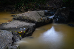 Lots of Muddy, Silty Water After We Had Some Storms (John Brighenti) Tags: creek water stream brook twinbrook river rocks longexposure waterfall flow liquid h2o silt muddy borwn green summer forest outdoors nature landscape reflection sony alpha a7 sel50f18f photography pictures photos