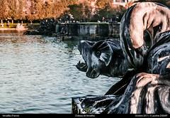 Chateau - Versailles - Oct. 2017 (Laurène Zabary - Photographie) Tags: paysage landscape landscapes france versailles chateau castle culture patrimoine tourisme tourist travel traveler photography monument monuments daylight outdoor outdoors history historical heritage fountaine fontaine