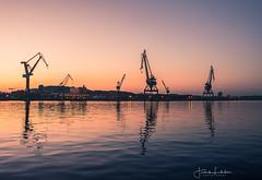 This is Gothenburg (Fredrik Lindedal) Tags: cranes harbor sunset bluehour sweden sverige sky water light city cityscape cityview gothenburg göteborg göteborgshamn lindedal visitsweden visitgothenborg thisisgbg