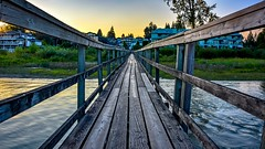 Walking the planks (Christie : Colour & Light Collection) Tags: rustic boardwalk leadwork lead river fraser bc canada portcoquitlam fraserriver rickety lumber planks water riverbank metrovancouver pacificnorthwest scenic evening sundown outdoors gangway dock pier wharf nikon d5200 dslr photography calm serene tranquility peaceful wooden decay bridge hff happyfencefriday sunset