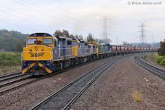 IMG_6231 C507 C504 48s34 8049 C505 Warabrook 5343 26.8.18_1 (Brians Railway Collection) Tags: railway warabrook nsw newsouthwales australia ssr southernshorthaulrailroad grain hoppers 5343 c507 c504 48s34 8049 c505 cclass 80class 48sclass