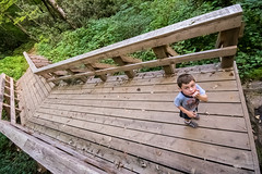 Little hiker (agasfer) Tags: 2018 northcarolina glenville hiking appalachia pentax k3 sigma1020 wooden bridge