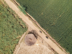 Aerial View of Farmland and Hut (AdamCohn) Tags: adamcohn djispark india mathura vrindavan aerial drone holi wwwadamcohncom dangolibangar uttarpradesh