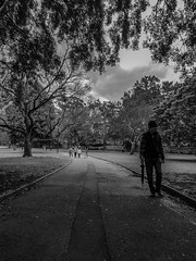20180826_135556_001 (Damir Govorcin Photography) Tags: the domain sydney blackwhite monochrome people leading lines trees footpath samsung s7 natural light composition sky clouds