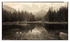 High Sierra Pond (Summicron20/20) Tags: kb canham 12x20 inch field camera ilford delta 100 nikon nikkor m 450mm f9 platinum palladium print arches platine ultra large format ulf kodak xtol 11