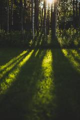Midsummer18-4 (junestarrr) Tags: summer finland lapland lappi visitlapland visitfinland finnishsummer midsummer yötönyö nightlessnight kemijoki river