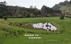 Keep it green...... (flying-leap) Tags: newzealand northcanterbury nz southisland rural wetlands water gorebay sony sonydscrx10m4 sonydscrx10iv sonyrx10iv scavenger12 green pasture ruralnz anshround90 cheviot environment farmland
