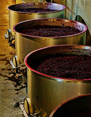 Fermentación del vino (editorvanguardia) Tags: fermenting zinfandelgrape winery vintner winemaking storagetank vat redwine cabernetsauvignongrape berryfruit vineyard cellar red purple agriculture grape fruit ripe crop wine alcohol juice winecountry