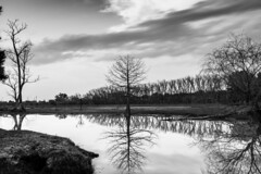 Between two worlds.... Entre dos mundos (Paio S.) Tags: sky water lake mirror landscape world countryside trees forest bw monochorme sunset