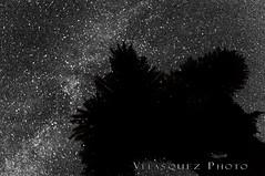They are out there (velasquez_photo) Tags: milkyway joshuatree bellecampground nationalpark california astrophotography nikond300 velasquezphoto eddievelasquez tamron