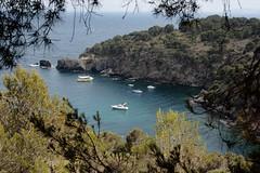 Note from a corner of the Mediterranean, (Fencejo) Tags: canon400dxti canonef28105mmf3545usm landscape seascape sea mediterráneo