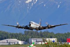 N555SQ Douglas DC-6B Everts Air Cargo (Keith B Pics) Tags: n555sq dc6 douglas canoneos n37585 sisq tgaviation anc panc anchorage keithbpics dc6b tedstevens evertsaircargo freighter united ua