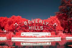 Beverly Hills 90210 (Infrakrasnyy) Tags: sony nex 5n infrared ir kolari kolarivision 550nm beverly hills 90210 palm trees cactus urban landscape sign tourist famous