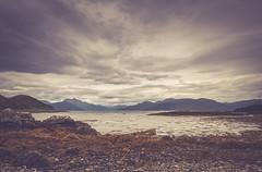Now or never (Tracey Rennie) Tags: scotland isleofskye sleatpeninsula knoydart soundofsleat skye camuscross seaweed