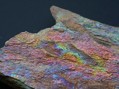 Colourful shale (Andrew M Lane) Tags: macro macromondays multicolor rock