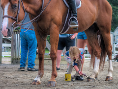 Horse is so glad they didn't go with that gaudy color they'd used last time! - 2018-08-19_09 (Paul and Nalva) Tags: nx500 samsungnx500 willsparkequestriancenter