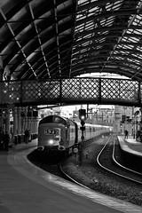 Alycidon At Newcastle Central (Derbyshire Harrier) Tags: 55009 deltic 2018 summer autumn newcastleupontyne railwaystation bw platform4 eastcoastmainline newcastlecentralstation alycidon northeast tynewear railtour retrorailtours delticretroscotiii d9009 1z42 dps ee