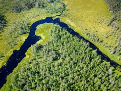 Backwood river (miemo) Tags: dji europe finland juuka kytöjoki mavic mavicpro northkarelia aerial creek drone forest landscape marsh nature river riverbend summer swamp trees water fi
