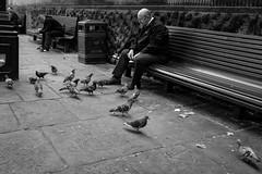 2018_238 (Chilanga Cement) Tags: fuji fujix100f fujifilm xseries x100f 100f bw blackandwhite monochrome street streetphotography candid people preston prestonstreetphotography lancashire