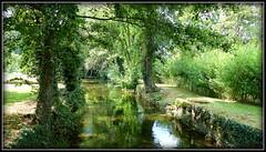 PARC de l' ABBAYE  d' AUBERIVE (villarceau70) Tags: nature canaux reflets vegétation verdure lumière
