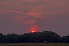 Sky painting (katrinchen59) Tags: sky skypainting sunset sundown sun eveningsky landscape nature sunsethunter dutchnature dutchskys europeansky beautifulsky abendhimmel sonnenunterngang sonne natur landschaftsfotografie zonsondergang avondstemming abendrot horizon