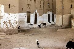 Shibam - street scene 3 (motohakone) Tags: jemen yemen arabia arabien dia slide digitalisiert digitized 1992 westasien westernasia ٱلْيَمَن alyaman kodachrome paperframe