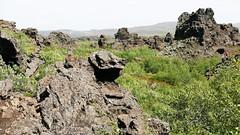 P1170889 (Tipfinder) Tags: iceland island reykjavik akureyri siglufjörður húsavík goðafoss goðafosswaterfall mývatn mývatnlake mývatnsee lakemývatn dimmuborgir reykjahlíð egilsstaðir seyðisfjörður eskifjörður reyðarfjörður höfn jökulsárlónglacier jökulsárlón fjallsárlón víkímýrdal hella selfoss selfosskirkja hellisheiðarvirkjun vikinmaritimemuseumreykjavik vikinmaritimemuseum thehúsavíkwhalemuseum whalemuseumhusavik whalemuseum thegeothermalenergyexhibition sagamuseum sagamuseumreykjavik theherringeramuseum theherringeramuseumsiglufjörður