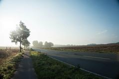 Near Gildehaus, Germany (blokkadeleider) Tags: niedersachsen lowersaxony nedersaksen deutschland duitsland germany sunrise zonsopkomst sonnenaufgang gildehaus gilhus hengeloerstrase westenberg