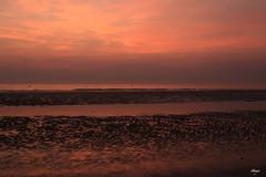 Sunset at Berck (Chauxe) Tags: chauxe canoneos sunset beach light plage coucherdesoleil couchédesoleil coucherdusoleil photographefrançais photographe berck