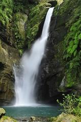 Yuntan waterfall (mattlaiphotos) Tags: waterfall water scenery landscape nature creek video cliff 瀑布 雲潭瀑布 fern rock