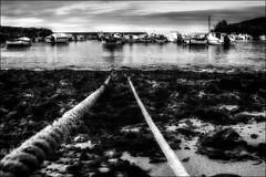 Embarcations en laisse / Boats on lead (vedebe) Tags: netb noiretblanc nb bw monochrome bateaux bateau mer ocean bretagne plage port ports eau pêche finistère