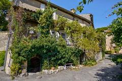 De la verdure ! (Cri.84) Tags: village maison goult vaucluse provence