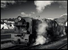 NG143 - Steaming (zweiblumen) Tags: