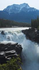 athabasca falls (fournierjy) Tags: canada athabasca falls