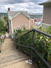 Yard Way, Southside Slopes, Pittsburgh Trip #189 (mis.steps) Tags: pittsburgh southside slopes steps stairs stairway city public missteps concrete railings yardway