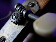 Gimme an 'A' (BeMo52) Tags: cogwheel gitarre guitar headstock macro macromondays makro sattel tuningkey wirbel zahnräder wormgear