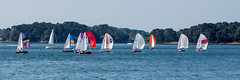 Bretagne - Golfe du Morbihan - (Noir et Blanc 19) Tags: bretagne golfedumorbihan bateaux voiliers sony a77