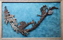 metallic bonsai, native silver and copper (subarcticmike) Tags: subarcticmike publicdisplay native metal silver copper mineral geology framed travel mtu michigan technological university 6ws sixwordstory geotourist geotagged calcite crystal keweenaw httppuzzitcom