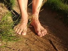 Descalzo en el Camino de Santiago (VIVE DESCALZO) Tags: descalzo barefoot barefooter barfus
