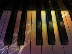 Keys. (jenichesney57) Tags: keys piano shadows colour white black panasoniclumix light