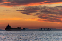Ships at Sunset (armct) Tags: sunset harbour harbor port ships vancouver canada horizon sea bay silhouette nightlights anchor clouds water reflection evening
