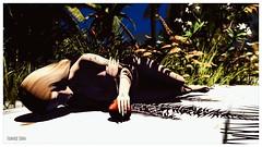 SPLASH - 50,000L Entry #3 - Tlaloc Beresford (frankieedon) Tags: second life adam eve apple snake nude naked story original sin splash beach garden eden