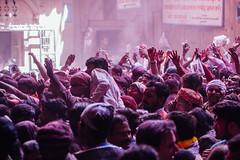 Hnads of Praise, Shri Banke Bihari Mandir, Vrindavan India (AdamCohn) Tags: abeer adamcohn bankebiharimandir hindu india shribankeybiharimandir vrindavan gulal holi pilgrim pilgrimage अबीर गुलाल होली