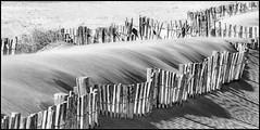 Beach shadows (Duevel) Tags: beach strand schaduwen shadows sand zand fence hekjes ngc bw